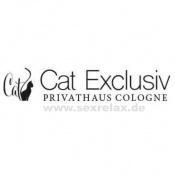Cat Exclusiv (Köln)